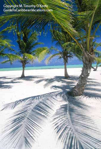 Beach At Playa Juanillo Dominican Republic Copyright M Timothy O Keefe Www
